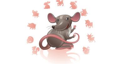 крыса восточный гороскоп