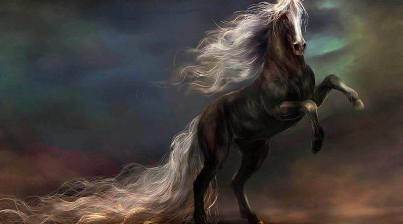 Гадание «Темная лошадка»