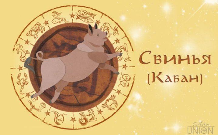 Подробно о годе Свиньи (Кабана)