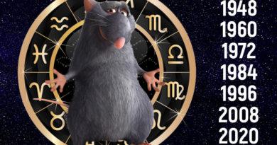 Знак восточной астрологии Крыса (Мышь)