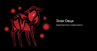 Китайская астрология — знак Овца (Баран)