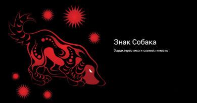 Китайская астрология — знак Собака