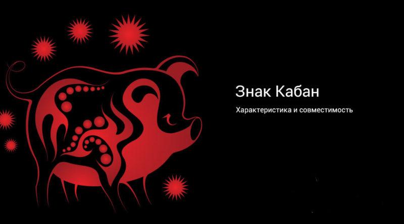 Китайская астрология — знак Свинья (Кабан)