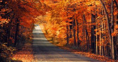 гороскоп на осень