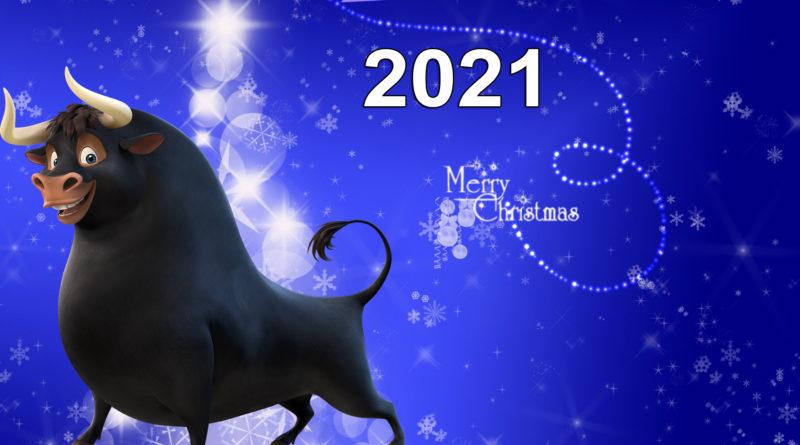 Новый 2021 год Белого Быка: Общая характеристика символа, где, как и в чём встречать