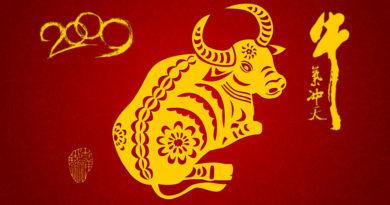 Что предвещает год Быка остальным знакам Китайского гороскопа